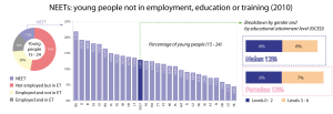NEETs: Young people not in employment, education or training (2010)