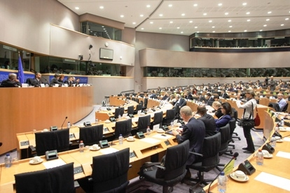Parliament's role in anti-crisis decision-making