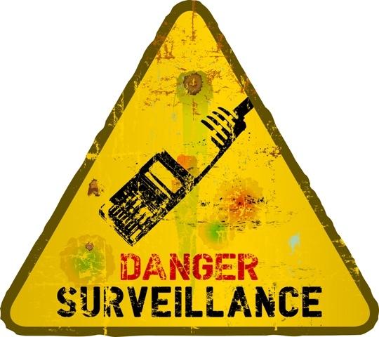 Does online surveillance violate fundamental rights of EU citizens?