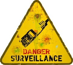 EU online surveillance and NSA data-sharing: does it violate the rights of EU citizens?