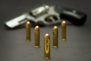 Le contrôle des armes à feu dans l'UE