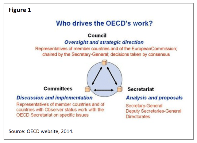 Who drives the OECD's work?