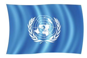 Reform of the United Nations