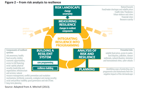 From risk analysis to resilience