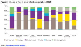 Shares of fuel in gross inland consumption (2012)