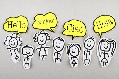 Languages, multilingualism, translation and interpretation