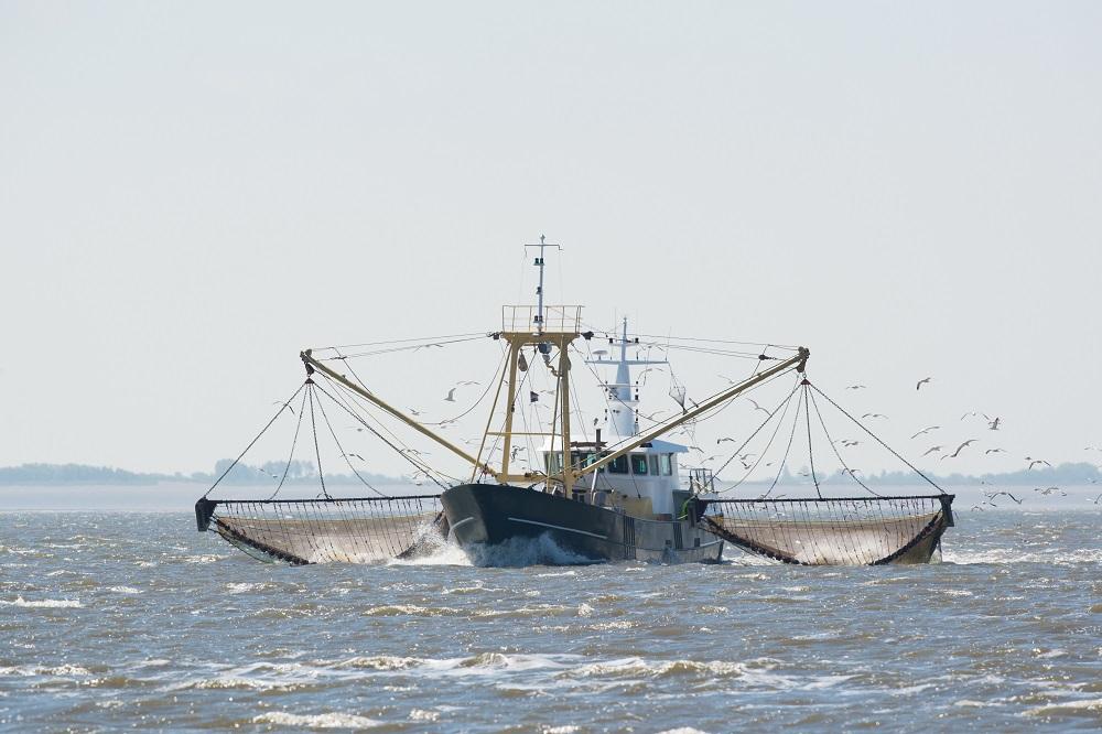 Multiannual plan for North Sea demersal fisheries [EU Legislation in Progress]