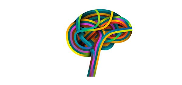 Understanding the Human Brain: A New Era of Big Neuroscience