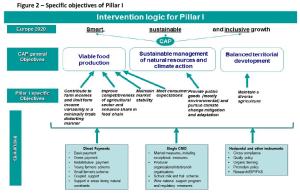 Specific objectives of Pillar I
