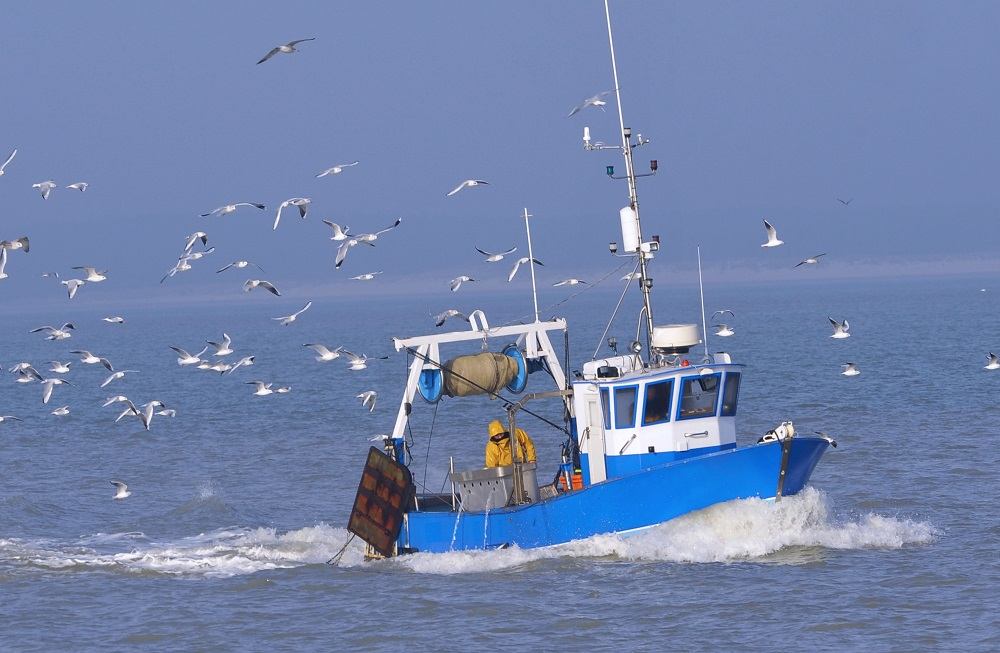 EU policies – Delivering for citizens: Fisheries [Policy Podcast]