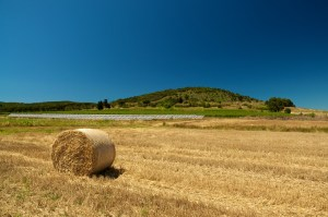 Bales on field and solar panels farm in background