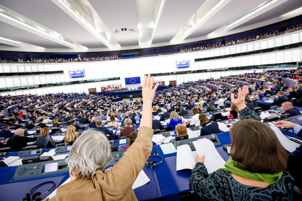 European Parliament Plenary Session – February 2021