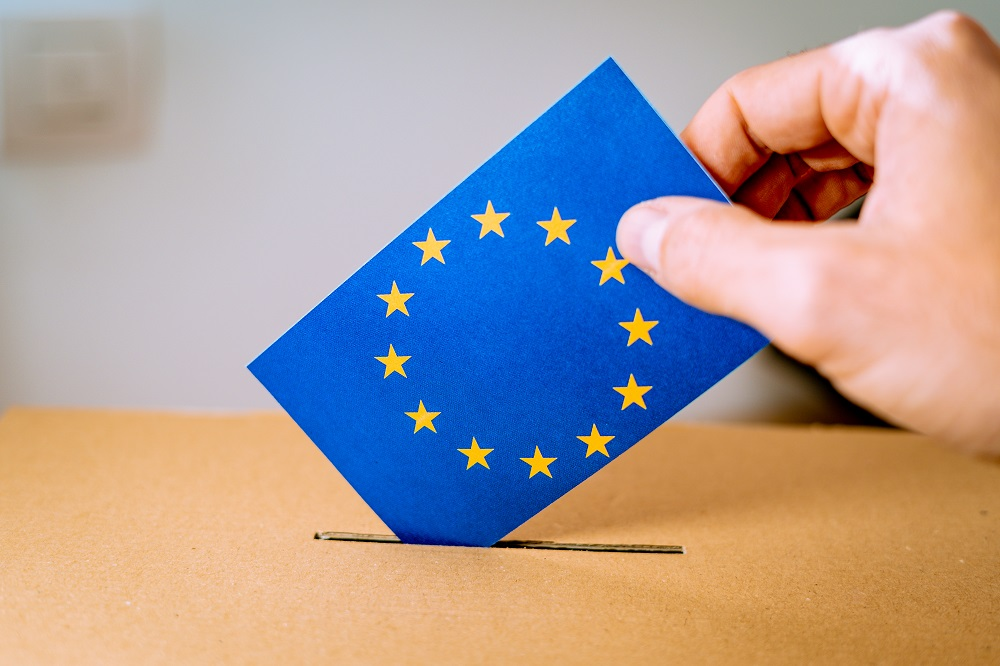 The European elections and thereafter [What Think Tanks are thinking]