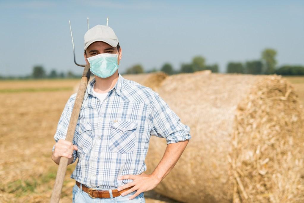 Coronavirus crisis support for EU farmers
