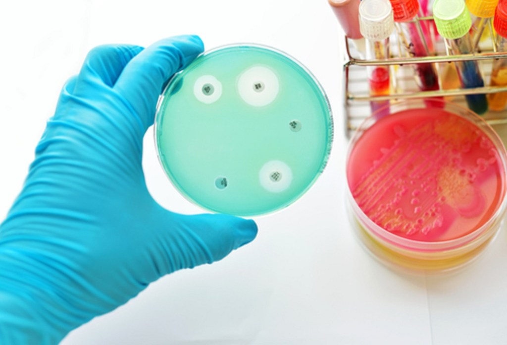 What if we could fight antibiotic resistance with probiotics? [Science and Technology podcast]