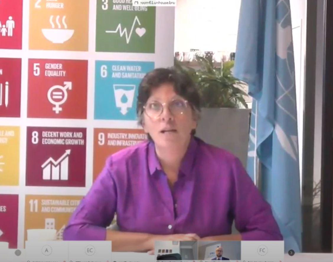 Barbara Pesce-Monteiro, director of the UN/UN Development Programme office in Brussels