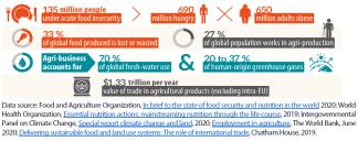 Food security in the world A goal still far away