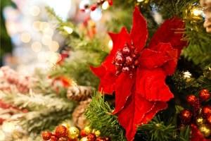 christmas-3823672_640