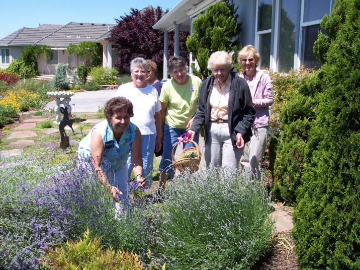 Martha Youngblood, Maxine Williams, Dora Moore, Carolyn Steiber, Leonie Sekreta and Ginny Newell