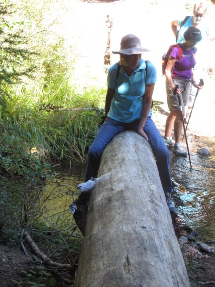 There is more than one way to cross a stream!