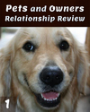 Tile_pets-and-owners-relationship-review-part-1