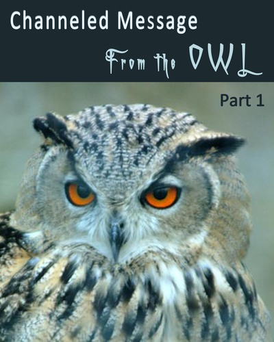 Channeled-message-from-the-owl-part-1