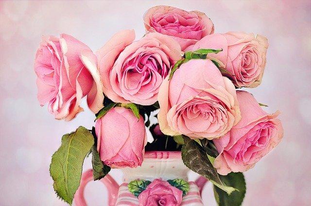 roses-3194057_640.jpg