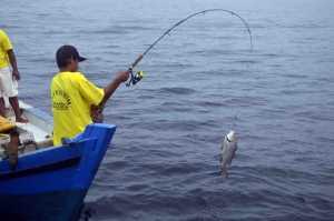 Peserta memancing merasakan sensasi strike pada acara Festival Karimata 2015