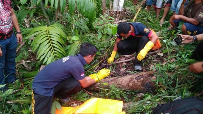 OLAH TKP. Tim Inafis Polres Sekadau tengah melakukan olah TKP di tempat penemuan kerangka Ludin di Engkersik, Jumat (6/4)--Polisi for Rakyat Kalbar