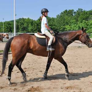 Boarder / Short-Stirrup Lessons at Kraus Farms - Young Woman trotting English style on horseback