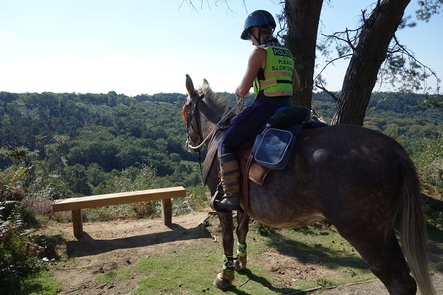Sari on her mule is overlooking a forest in the valley ahead. After regaining her confidence to ride, she is prepared for new adventures