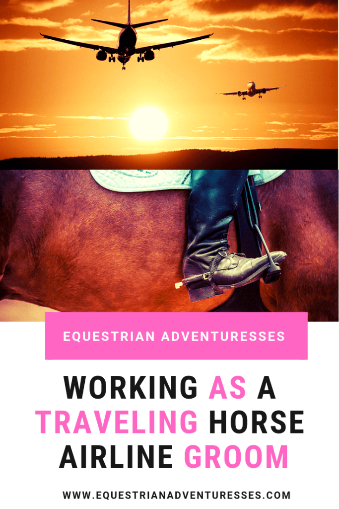 Working as a traveling horse airline groom Pinterest post
