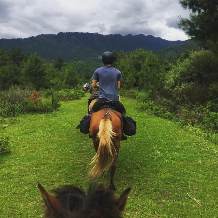 Cantering through meadows on a Bhutanese mountain pony