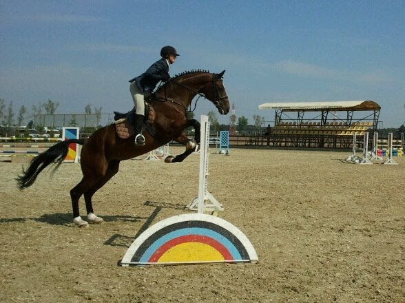 Krystal is showjumping in Romania