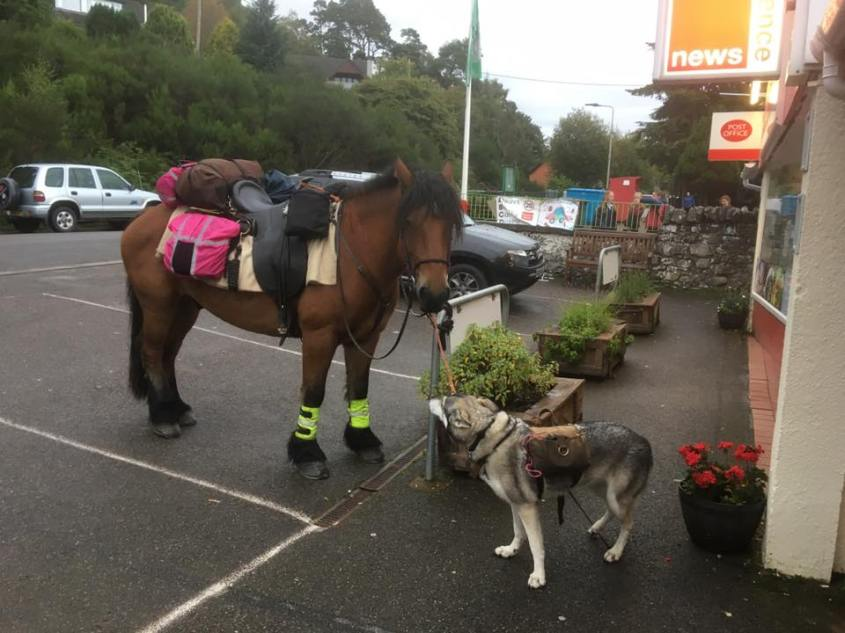 Shopping during long distance horse riding