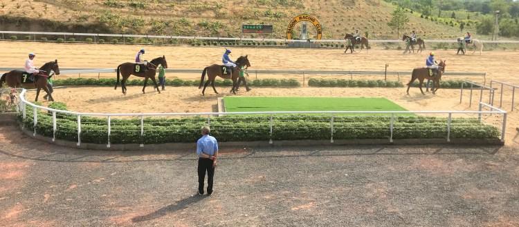 Race Horses are led into the Magadui Hippodrome, Vietnam