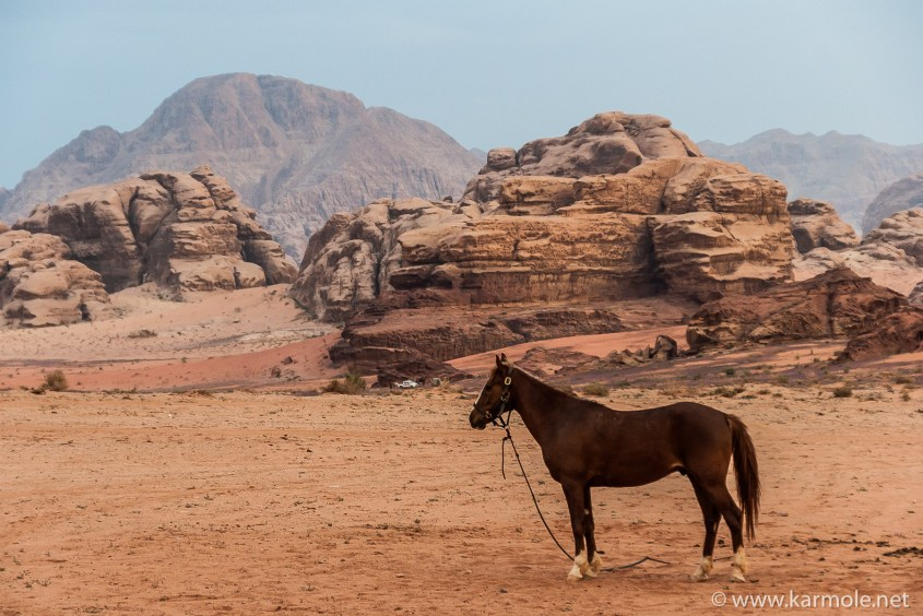 The landscape of Wadi Rum in Jordan served as Martian Landscape in some Hollywood movies.