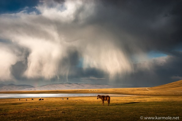 Horses and riders at the Son Kul Lake in Kyrgyzstan are waiting for heavy rain to start