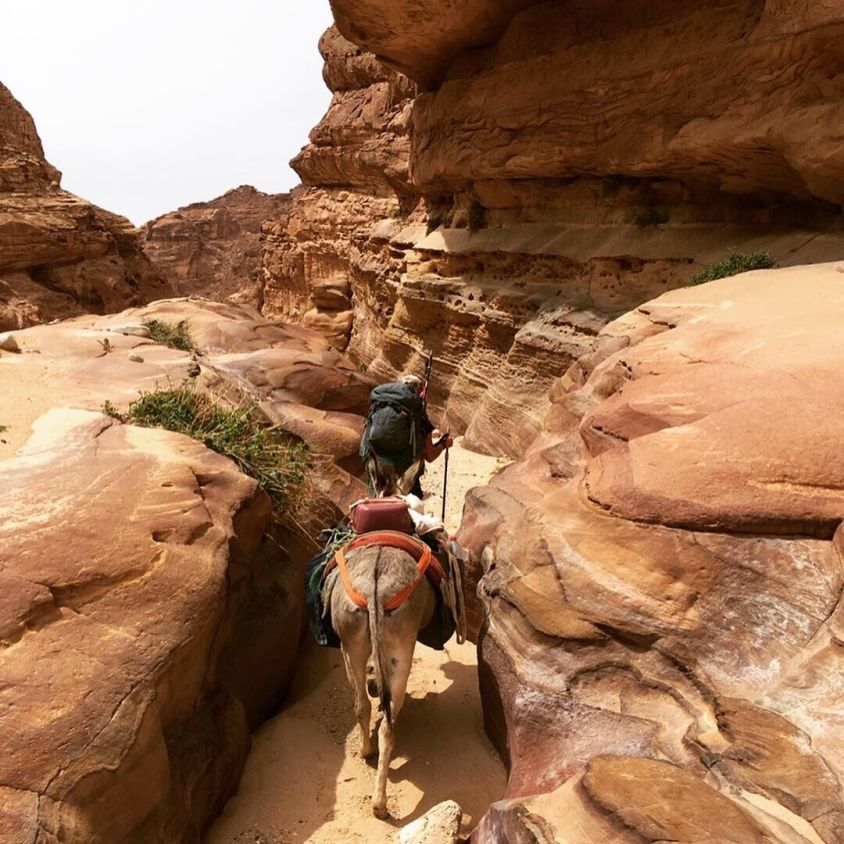 Walking through narrow canyons on the Jordan Trail with my Donkey