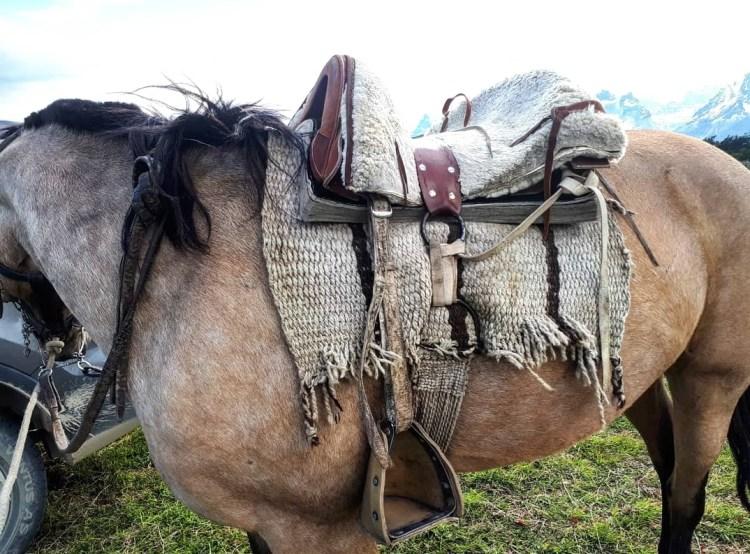 A traditional Chilean farm saddle