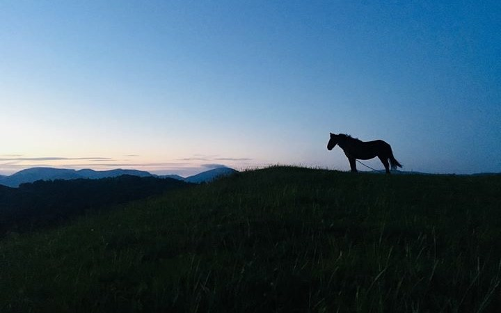 Sleeping under the stars on the last night of this great adventure: horse trekking in The Lake District.