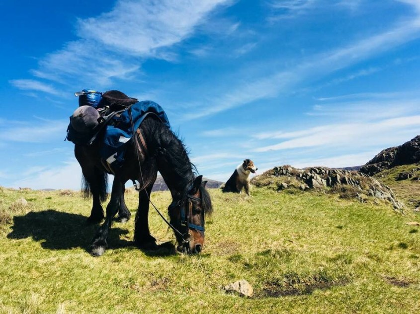 Having a brake on top of Scarth Gap during horse trekking in The Lake District.