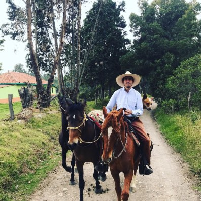 A trail guide leading a couple of horses for riding in Colombia
