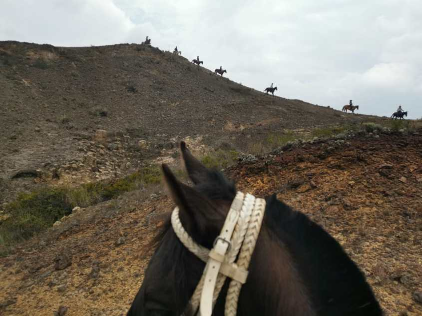 Horses walking along a ridge during horse riding in Colombia