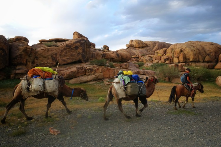 On my way to the Eagle Hunters in Mogolia with my pack camel following me