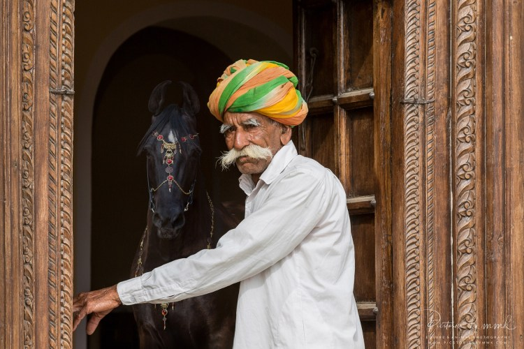 Equestrian photography: An Indian breeder literally opening the door to a world of Marwari horses