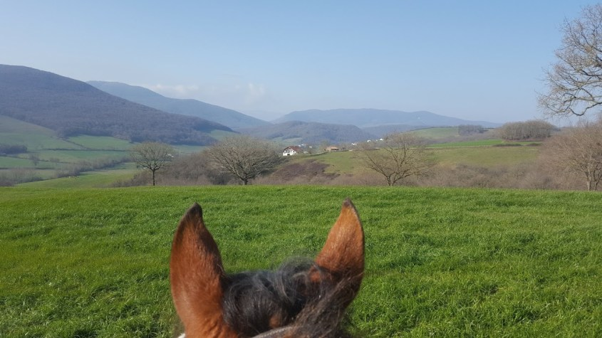 Overlooking the setting of our dream life in Spain on horseback: through Ranger's ears