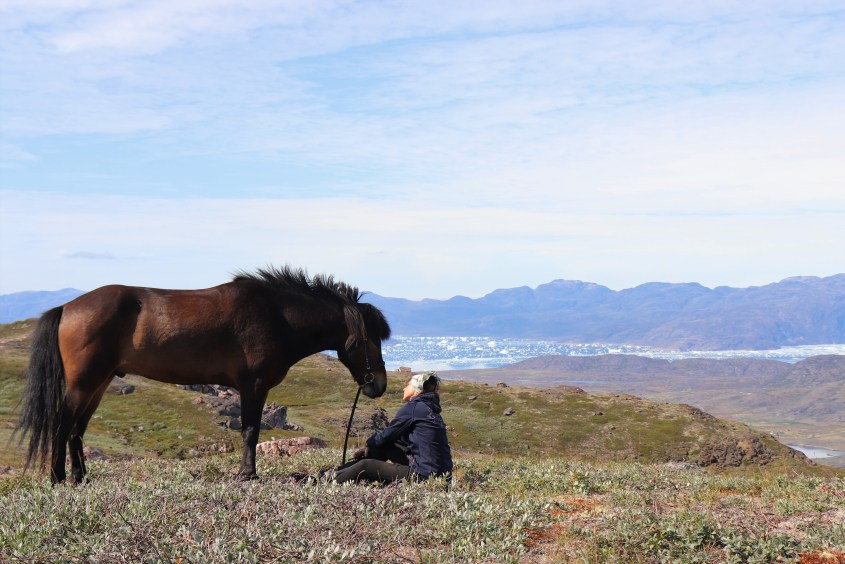In the breaks of our Greenland horse riding adventure, we could enjoy the scenery or bond with our well-behaved ponies.