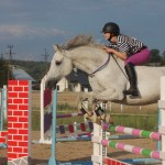 horse riding therapy to fight autoimmune disease by show jumping horses tackless