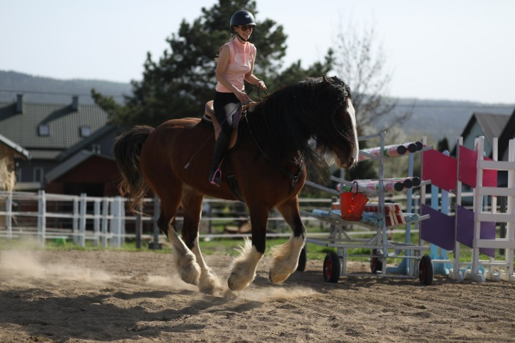 A woman created her own horse therapy to heal from an autoimmune disease by training and riding horses bridleless